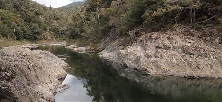 Pelorus River, Mt Richmond Forest Park
