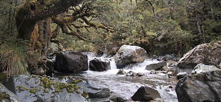 upper Maruia River, St James Walkway